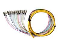 单模12芯束状尾纤