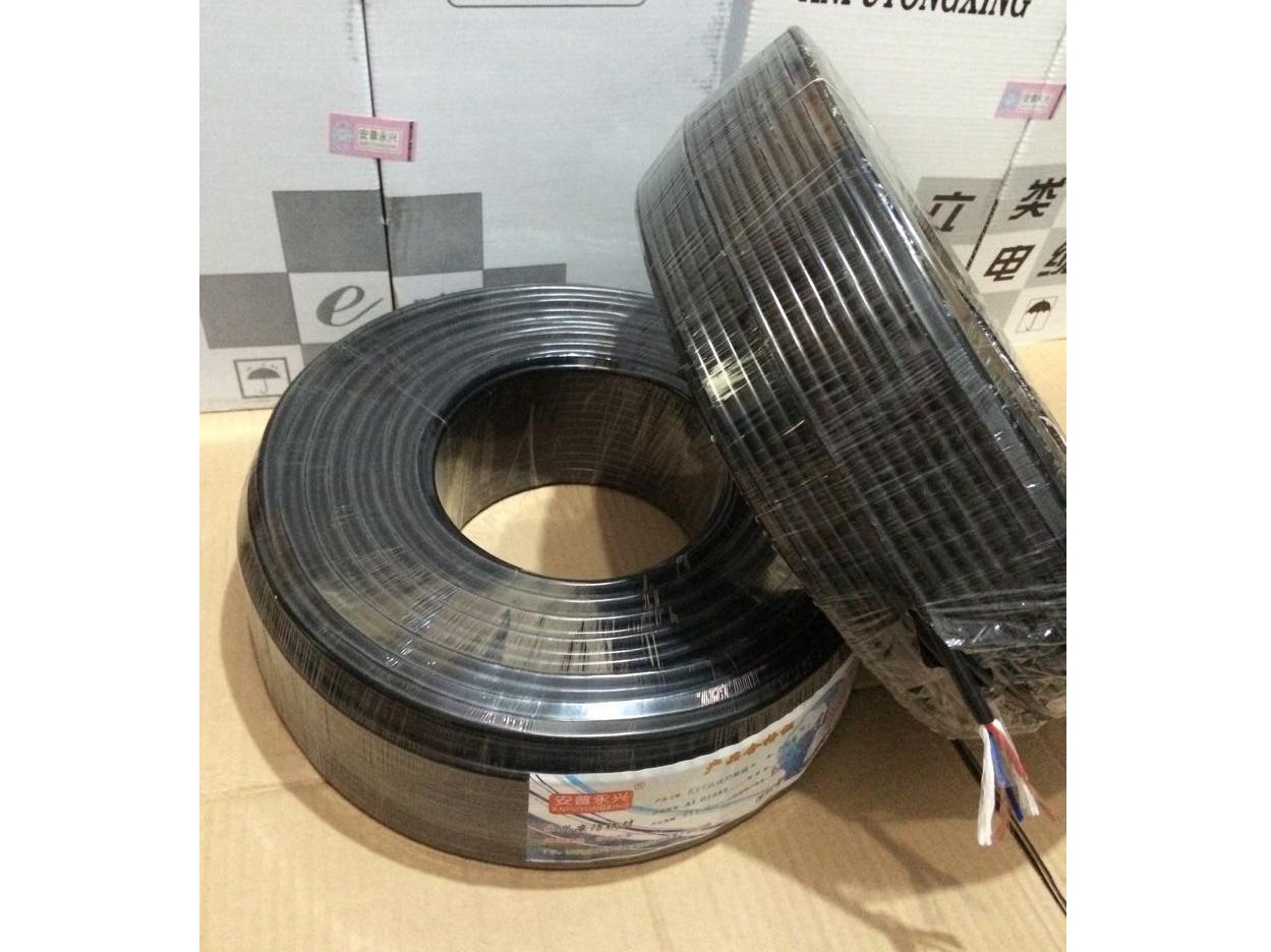 安普永興 RVV護套2芯1.5無氧銅