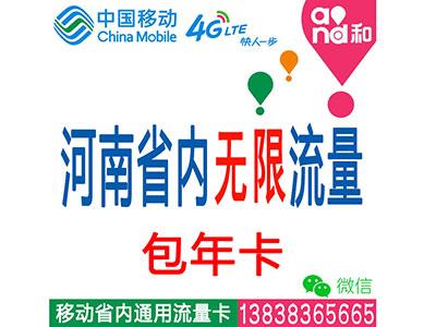 移动4G河南省内套餐:无限时间无限流量一年平板-电脑-ipad-手机上网流量卡