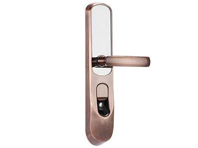 """海康威視DS-L2-FP-RF聯網智能鎖    """"國際領先的光學活體指紋識別技術,防假指紋技術,誤識率("""