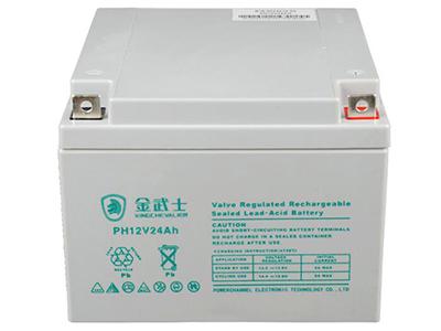 金武士PH-24AH 12V免维护铅酸蓄电池 UPS电池12v音响电瓶门禁
