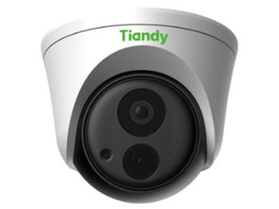 天地偉業  TC-NC220-I3E  200萬紅外半球 POE網絡攝像頭 紅外30米 1080P高清