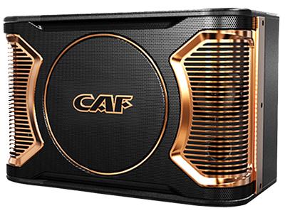 CAF KC8810/9910 卡包專業音響 頻率響應(±3dB)  45HZ-20000HZ  45HZ-20000HZ 最大功率(Peak)  800W  800W