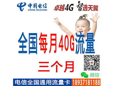 电信4G 全国通用4G流量  平板-电脑- 笔记本台式机上网纯流量卡 每月40G流量 全程不限速 4G上网卡 三个月不交费
