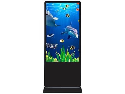 乐彩视讯  LLCS-G4901-LD 49寸落地广告机 尺寸:1810X710X50