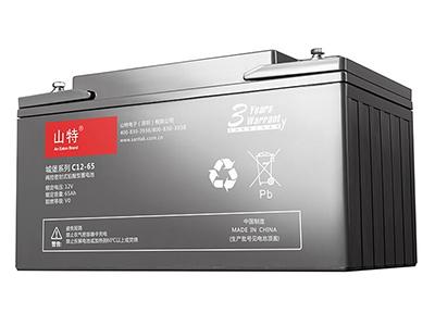 山特城堡 C12-65 蓄电池