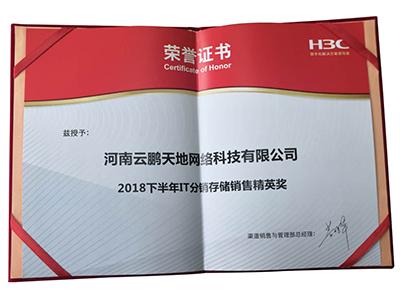 H3C IT分銷存儲銷售精英