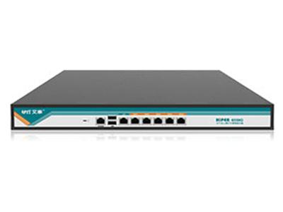 艾泰  HiPER 6550G  全千兆防火墙架构宽带网关/宽带路由器 5个千兆 WAN口,1个千兆 LAN口  3.3GHz网络专用处理器,4G高速内存  支持无线控制器功能,能管控512个AP  上网行为DPI库1700+,持续更新中   实时优化网络性能,可有效限制P2P软件   支持 VPN 协议,灵活组建虚拟局域网  支持短信、微信、免认证等多种广告认证方式