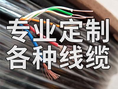 专业可定制线缆
