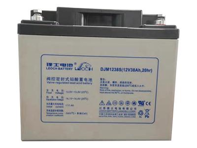 理士 DJM1238S 蓄电池
