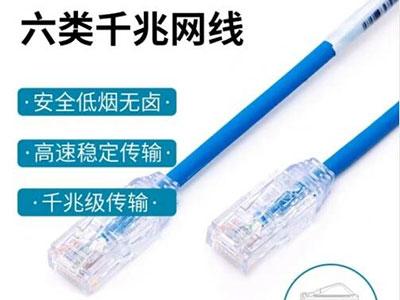 泛达panduit六类网线非屏蔽28线规成品网线跳线(各种长度可定制)