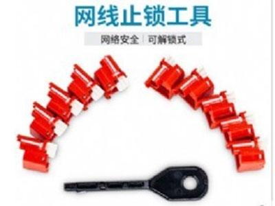 Panduit泛达RJ45模块锁水晶插头跳线锁10个装
