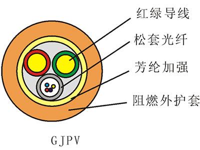 天津立孚  标准松套管式加信号线室内光缆(GJPV)