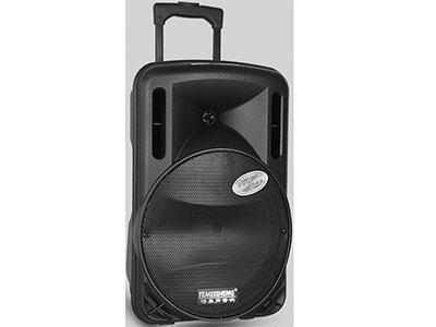 特美声 A12-1单话筒 喇叭尺寸:12寸低音、3.5寸高音 电池容量:6600毫安锂电 充电器:15V2A桌面式 额定功率:120W 话筒频点:259.1Mhz 功能:蓝牙、语音、录音、话筒优先、外接12V  配件:单手持话筒、YK-888遥控、充电器、说明书 适用范围:户外活动(如体操、广场舞蹈、产品促销、旅行聚会等)  产品特点:采用进口远程喇叭设计,穿透力极强。