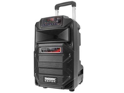 """特美声  SL10-31  """"喇叭尺寸:10寸低音,80磁高音 电池:5A/12.8V高性能电瓶 额定功率:100W 峰值功率:200W 产品尺寸:32*30*52cm 产品净重:8.35KG 产品配件:金属对频话筒*2、YK-555遥控、充电线 功能:蓝牙,语音,录音,双USB/TF卡,消原音高品质消原音伴唱功能,人声自动减弱、不限音频格式。蓝牙状态下也可消原音伴唱 适用范国:户外活动(广场舞蹈、街头演艺、个人弹唱、体操活动商铺促销、会议、旅行聚会等)"""""""