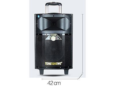 特美声  QX-1209 额定功率: 100W  峰值功率: 310W 低音尺寸: 12时寸x1个 . 高音尺寸: 5对x1个 电池类型:铅酸电瓶12V/7.5A 电源规格: AC220V 50Hz/DC12V 箱体材质: ABS工程塑料+木质箱体