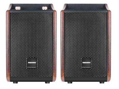 """特美声 T271 """"型号:T271 喇叭尺寸:6低音、双3寸高音 功率:100W    尺寸:225*230*360MM 净重:11.5KG 箱体:贴皮木箱 功能:消原音伴唱,蓝牙,语音,录音,音频输入输出,智能APP调节,中文显示屏,网红直播(一线通),内置二十几种直播控场音效,光纤同轴输入,耳机监听,蓝牙复位  适用场合:家庭K歌,别墅,咖啡厅等"""""""