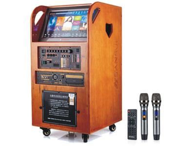 """山水  SG6-15 """"喇    叭:15寸 频率响应:50KHZ-20KHZ 额定功率:200W 电    池:30AH 使用时间:4-10H      话筒配置:双咪U段追频 输入数量:6通道"""""""