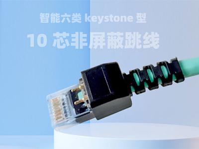 厚德纜勝  智能六類keystone型10芯非屏蔽跳線 智能六類keystone型10芯非屏蔽跳線