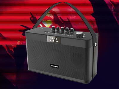 万利达   X21 1、音频线。             2、遥控器。            3、充电器。             4、说明书。               5、单话筒。            6、背带。          7、可自行配外置万能话筒。