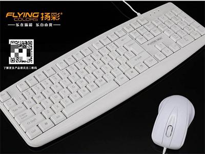 扬彩  9100白 有线白色套装