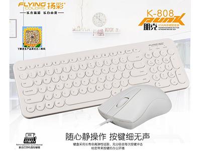 扬彩 有线办公套装 1.键盘棱角分明,造型时尚 2.精心改良的空格键和回车键配置 弹簧,104标准键区,高键帽 3.键帽字体镭雕,经久耐磨 4.鼠标内部增加配重块,重心稳定