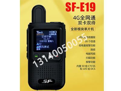 顺风 SF-E19  4G全网通双卡双待 全新模块单片机